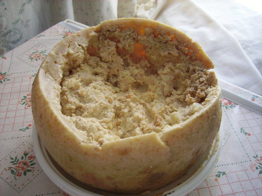 7 самых необычных сортов сыра в мире