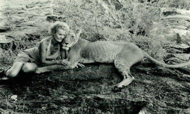15 самых влиятельных животных, сыгравших важную роль в истории человечества