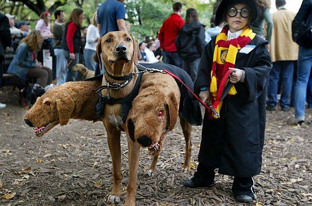 Выбираем интересный костюм для Хэллоуина