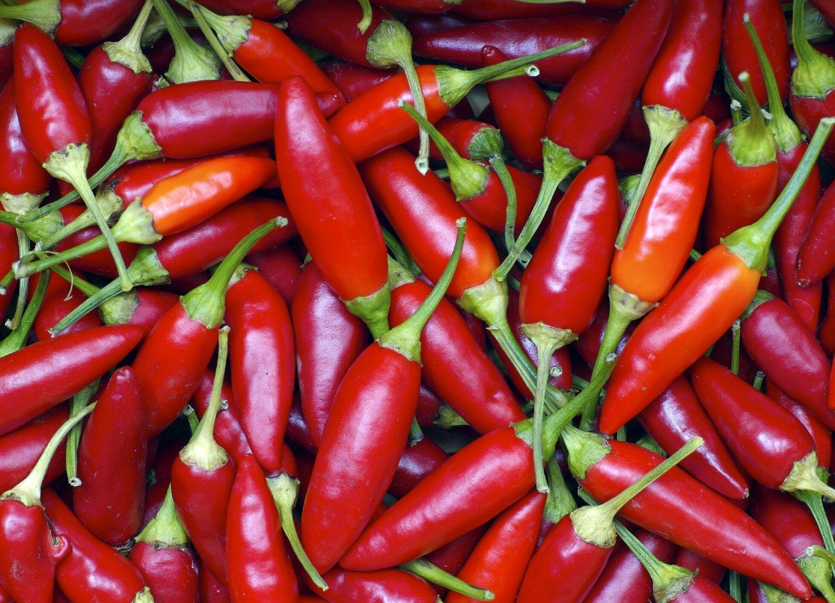 8 естественных причин, по которым вам нравятся различные продукты
