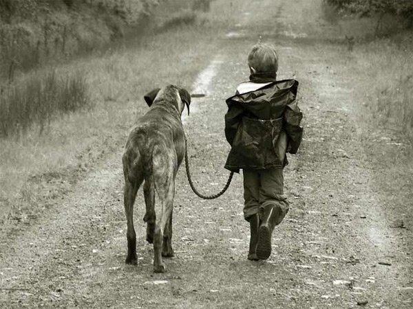 Андрей Толстых, выращенный собаками