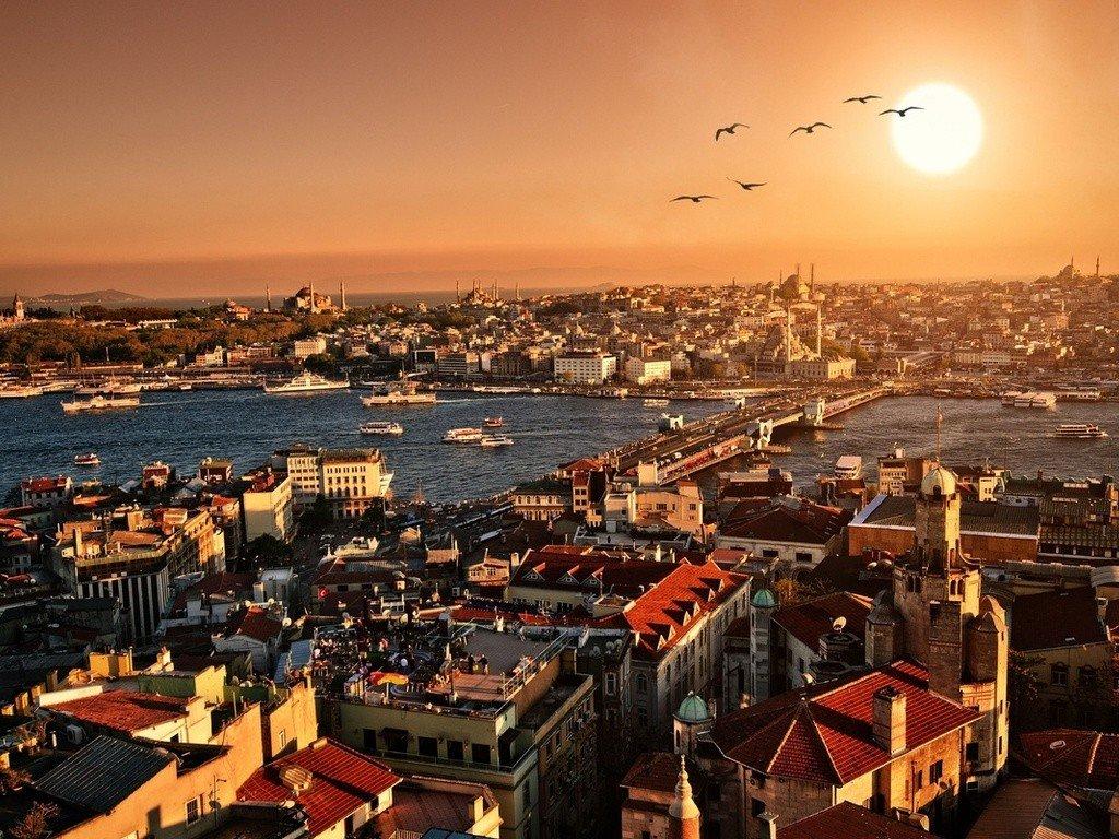 Птицы на фоне заката в Стамбуле