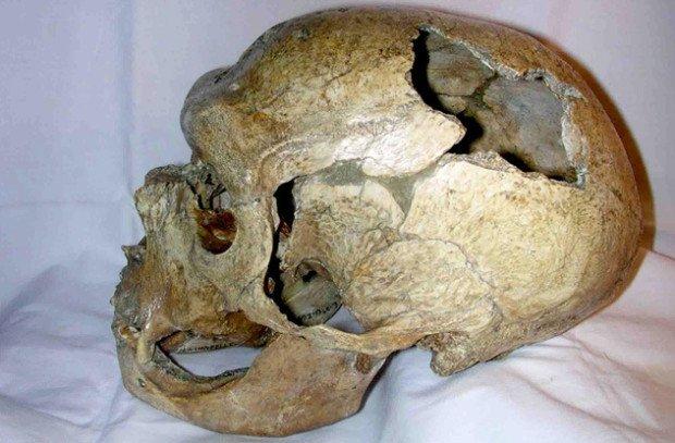 разбитый череп неандертальца
