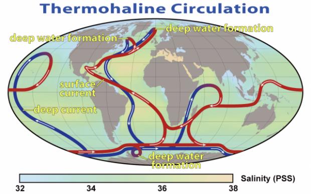 Карта со схемой циркуляции холодных и тёплых вод в мировом океане