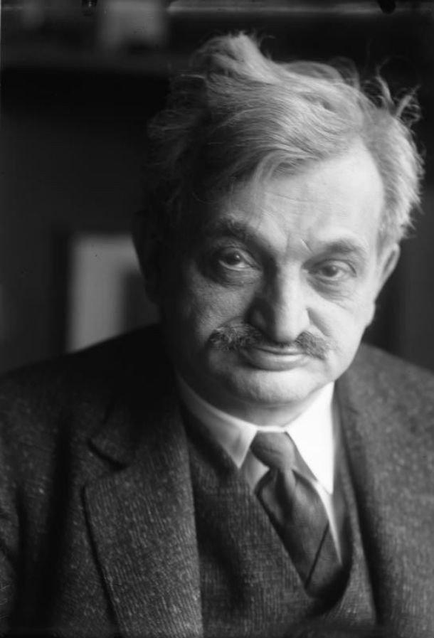 Шахматист Эммануэль Ласкер