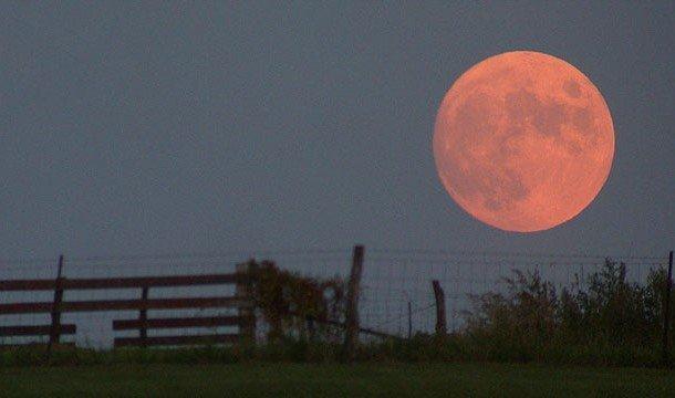 Полная Луна над горизонтом