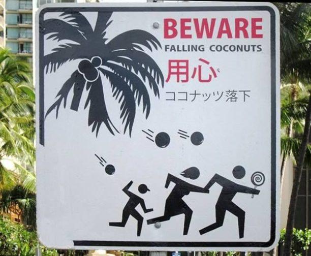 Знак 'Берегись падающих кокосов'