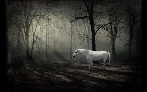 Белый единорог в лесу