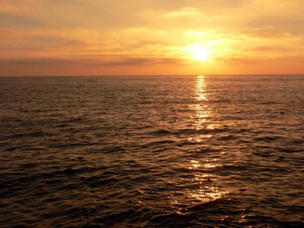 Солнце — источник витамина D
