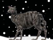 10 сказочных существ, с которыми вам вряд ли захотелось бы встретиться