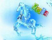 2014 год Лошади, что нас ждёт?