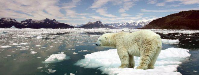 6 неожиданных последствий глобального потепления, о которых никто не задумывается