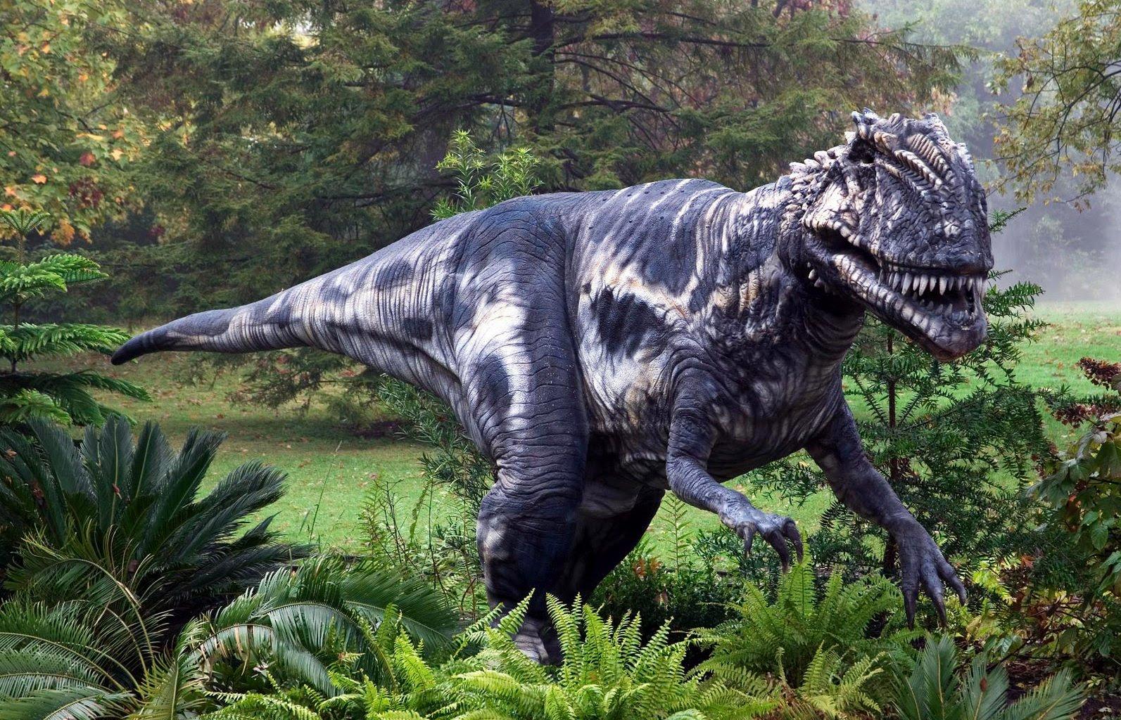 10 ошибочных представлений о динозаврах