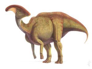 10 видов динозавров, открытых в последнее время