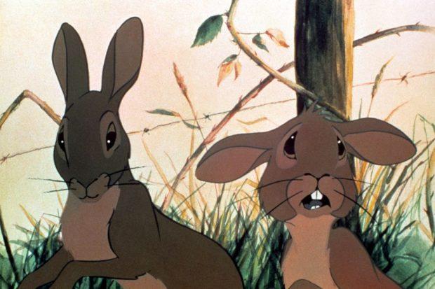 кадр из мультфильма «Обитатели холмов»