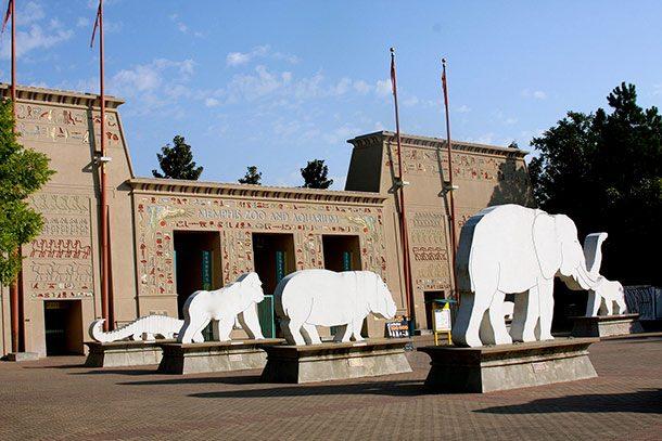 Зоопарк Мемфиса, штат Теннесси, США