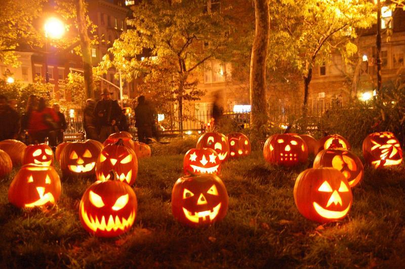 25 лучших костюмов на Хэллоуин для собак.