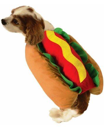 Собака в костюме хот-дога