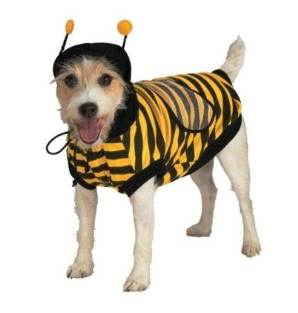 Собака в костюме шмеля