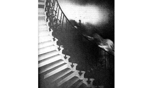 Лестница с тюльпанами