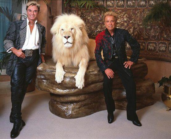 Нападение тигров на Зигфрида и Роя