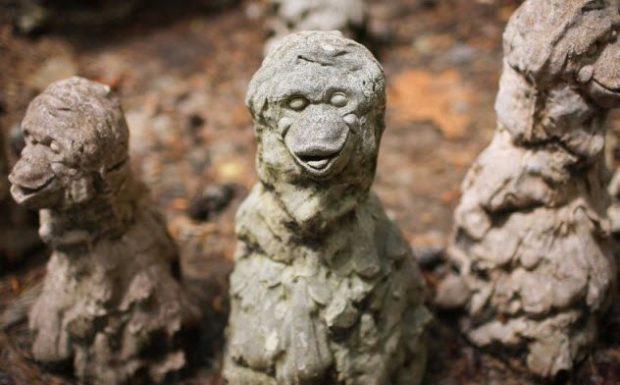 Памятник обезьянам