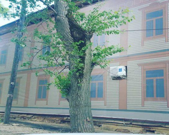 фальшфасады в городах россии
