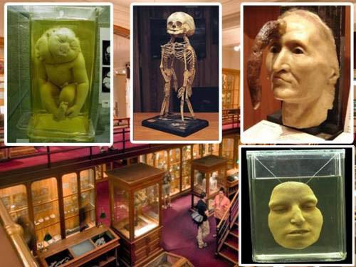 10 самых страшных музеев мира