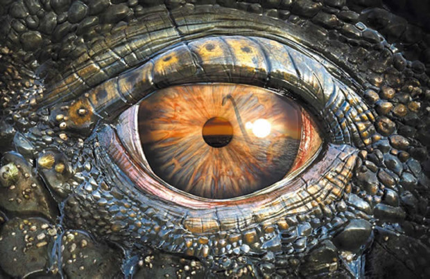 © www.museodizoologia.it