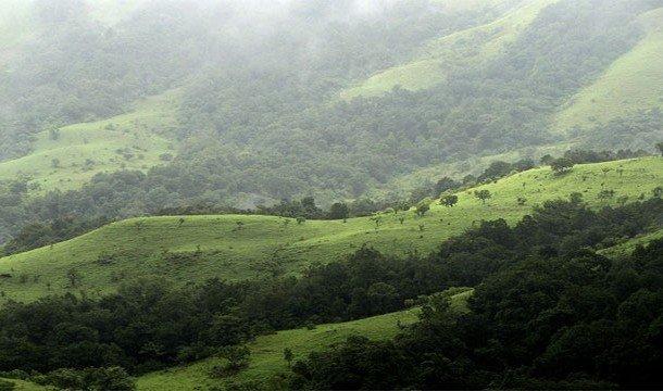 Горный тропический регион