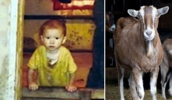 Саша, живший с козами