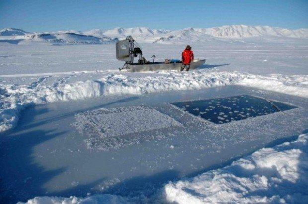 Полынья, вырезанная во льдах Арктики