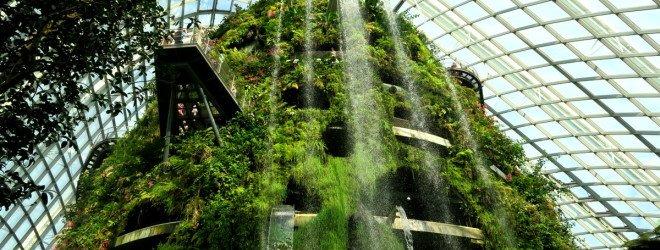 Искусственная гора и леса в Коста-Рике