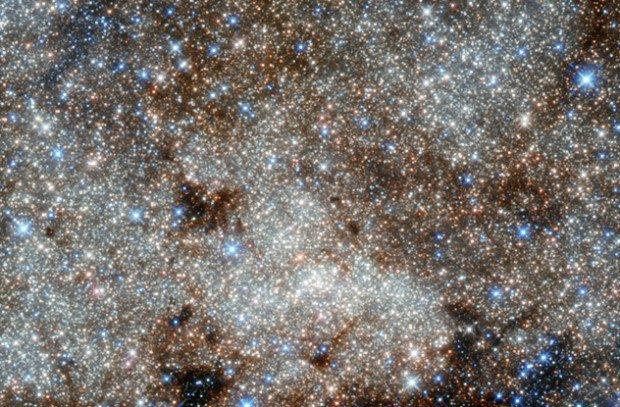 Тысячи звёзд