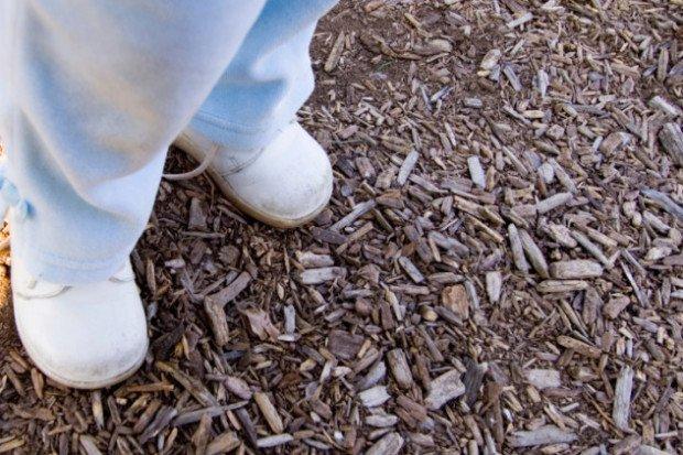 Почва, покрытая мульчей