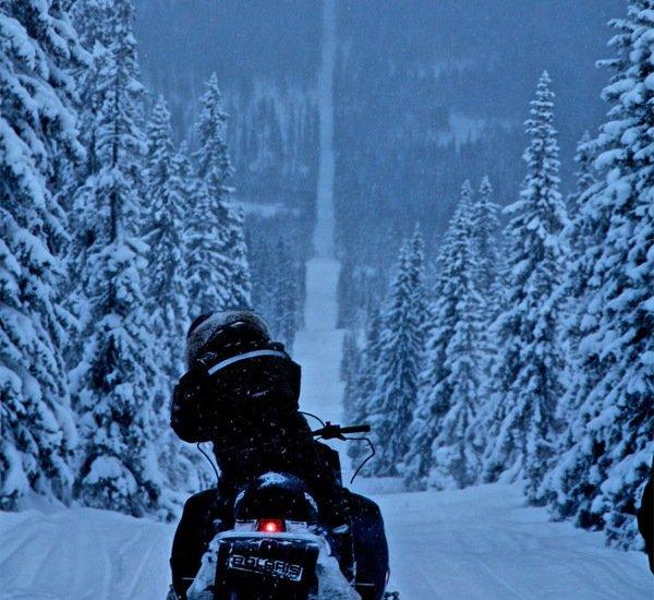 Катание на снехогоде по трассе между Швецией и Норвегией