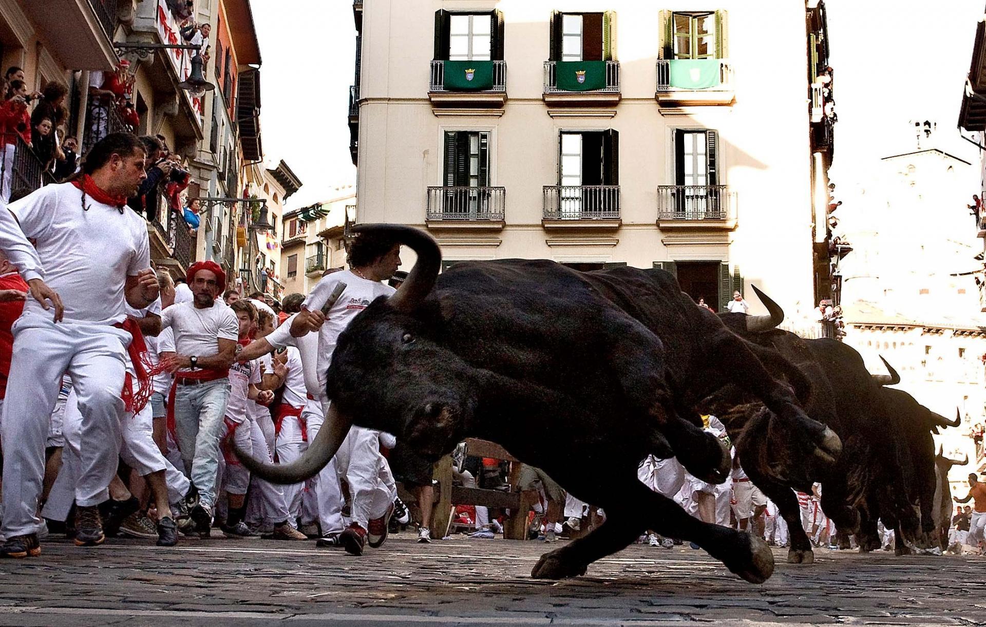 Забег быков в Испании