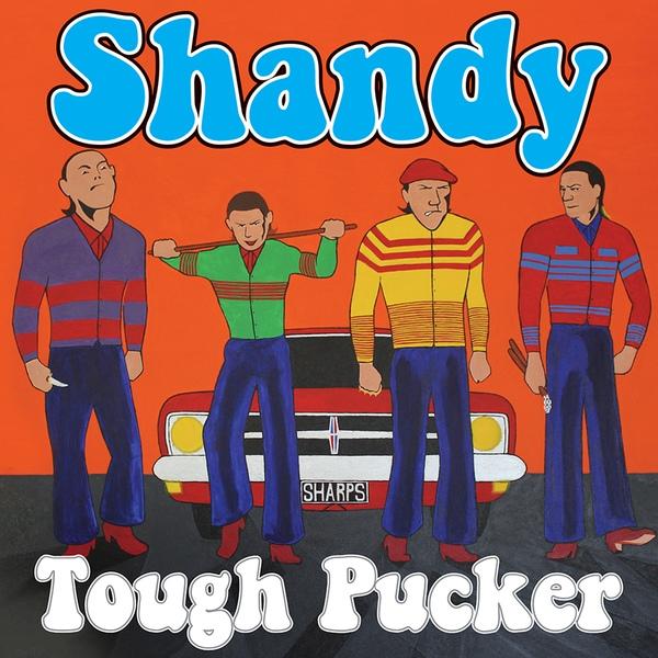Обложка альбома группы Shandy