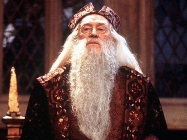albus dumbledore sorcerer's stone