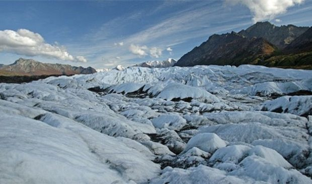 Аляска, её ледники и фауна