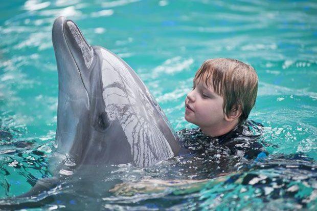 Дельфин с мальчиком