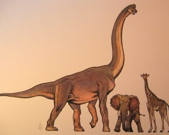 10 невероятных доисторических открытий, сделанных в 2014-м году