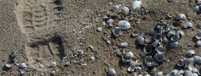 A footprint of a Ukrainian serviceman is pictured by sea shells on a beach in the port city of Mariupol on the Azov Sea