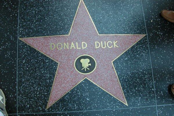 Звезда Дональда Дака на Аллее Славы