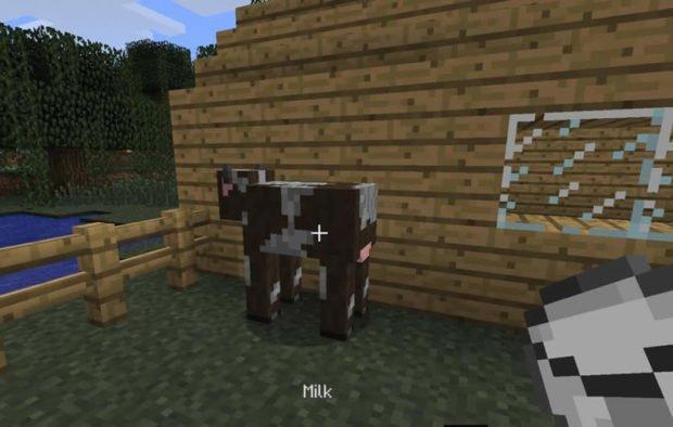 Корова и ведро