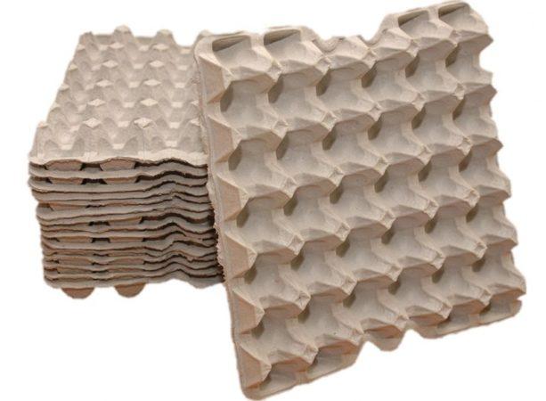 Коробка из-под яиц