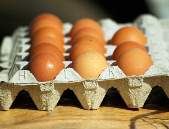 Упаковка из-под яиц