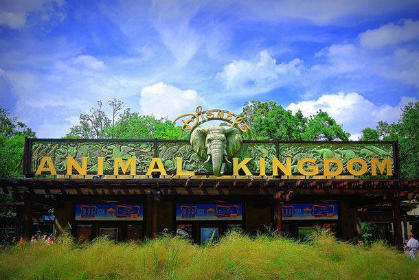Дисней Энимал Киндом Тим Парк, штат Флорида, США