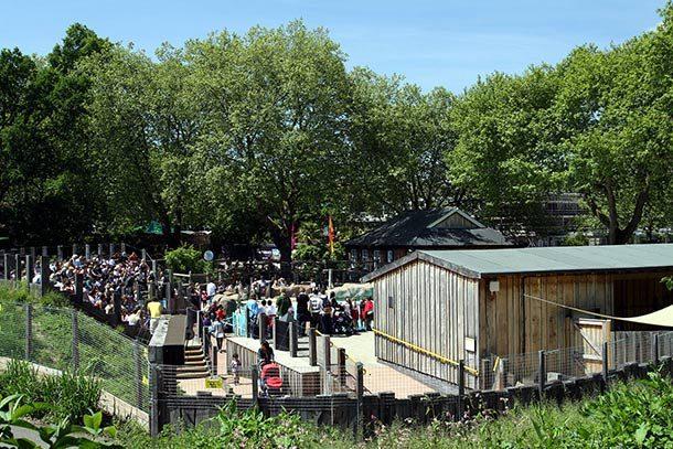 Лондонский зоопарк, Великобритания