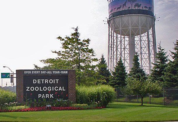 Зоопарк Детройта, штат Мичиган, США